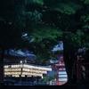これも八坂神社