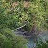 静岡県の秘境、寸又峡に行ってきた