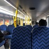 ニュージーランドのオークランドのバスの乗り方や料金について~観光前に知っておきたい情報~