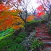 池田山公園(品川区東五反田)