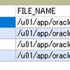 dockerで動かしているOracle DB 11gをShift-JISに変えたらデータが永続化されなくなった