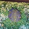 コスタリカ生活:スターバックスコーヒー農園(Hacienda Alsacia Starbacks Coffee Farm)