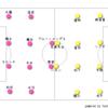 【ラブオール】Jリーグ 第20節 セレッソ大阪vsベガルタ仙台 (0-0)