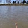 滝川市、池の前水上公園、ヘラブナ釣りです!