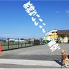 【わんこと旅】 (ドッグラン&カフェ) レクラン 【愛媛県】
