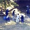 公園に刃物男、5人負傷…殺人未遂容疑で逮捕