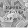 【乳酸菌辞典】ラクトバチルス・アシドフィルスとは?働き・研究結果・含まれる食品・サプリまとめ