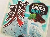 セブン「先行販売」爽「チョコミント」が食べやすい!爽快感が強めなチョコミント!苦手だけど美味しく食べれた!