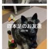 現代を斬る!甲斐犬サンの場合〜驚イタ!Σ('◉⌓◉')