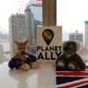 アジア太平洋レインボーフォーラムに参加しました。