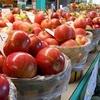りんごで美味しいおひとり様簡単レシピ