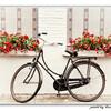 自転車初心者が挑む初めてのチェーン清掃・注油