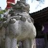 兼六園傍の石浦神社には逆さなものと鳩胸な狛犬がいる