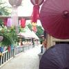チェンマイ!! Chiang Mai,Thai ①