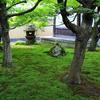 京都・紫野 - 苔むす大徳寺黄梅院