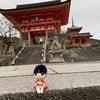 けんちょっこりと行く〜春の京都〜