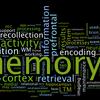 記憶力のプロに学ぶ、名前の覚えるための戦略