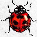 みっちの昆虫見聞録