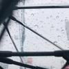 雨 / 一年の変化