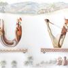 水彩画「Parade Urial-Vicuna(Vicugna)」