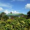 今年のGWは10連休!人と違う旅行がしたいなら南太平洋のサモアへ①