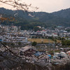 リーフでお出かけ! 枝垂桜と新幹線のコラボ 幸田文化広場【東海ドライブ】