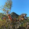 20120926_白根山を見よう~金精山&前白根山 その3