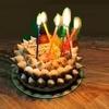 祝 たぬき様ご生誕69周年