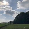 梅雨明け翌日、早くも秋冬野菜栽培の準備を始める