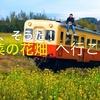 ドローン 空撮「 あ、そうだ!菜の花畑へ行こう」DJI Mavic/Phantom4Pro