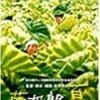 『菊次郎の夏 』