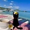 「ライフシフト」幸せに生きる為にすべきこと「サムイ島」