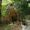 【絵本】恐竜好きの幼児が自ら選ぶ、絵本の紹介