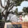 さよなら大阪大学外国語学部(旧大阪外国語大学)箕面間谷キャンパス!2021年4月に移転するので閉鎖前に行ってきた!