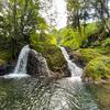 石川県小松市にある「鱒留の滝」は小さいながらも新緑と苔に囲まれた美しい滝