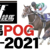 【俺のPOG★日本ダービー2021への道】2020年10月13日終了現在ポイントランキング【日刊競馬POG2020-2021連動企画】