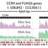 genome trackを可視化する svist4get