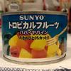ドライフルーツの食感に近いパパイヤのシラップ漬け缶詰【トロピカルフルーツ/SUNYO】