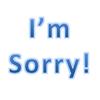 大坂なおみ選手の「I'm sorry.」発言.謝罪「apologize」のようです.
