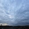 9月9日(月)曇り