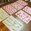 母の日に向けて【5月7日おしばな会ではカード作りをします】