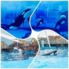迷宮・名古屋港水族館を楽しむ方法