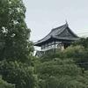 夏の犬山城には、朝イチで行こう。