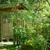 夏の京都へ撮影旅行に行ってきました。(天授庵編)