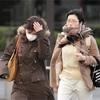 関東と北陸で春一番 各地で気温上昇、強風に注意