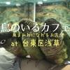 浅草「鳥のいるカフェ」は鳥だらけインコだらけのお店、まさに鳥好きのパラダイス