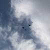 ゴミ? 鳥? ドローン? え? UFOなのか??? 未知との遭遇です。