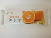 ウチカフェ「日本のフルーツ」伊予柑がまるで果汁をアイスにしただけ。それが最高に美味しい。