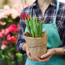 植物に関する仕事がしたい人の就職活動!押さえたい業界・職種・企業