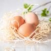 《食と健康》玉子は1日何個までOK?毎日の玉子で、心と身体を健康に